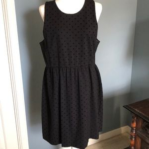 J. Crew Factory Black Dot Ponte Dress